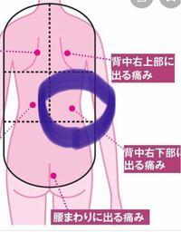 背中 の 痛み 左側 何 科