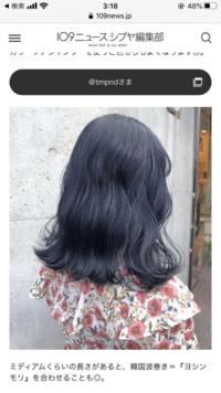 ブルーブラックに染めたいのですけど、ブリーチは必須ですか?画像のような色味です。  ダブルカラーで髪を傷めて入れる方法では、わたしの希望する色が入らないのでしょうか?