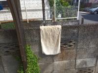 横の家の住人が、境界線の塀越しに洗濯物を干すんですが、あなたならどうします?気にしませんか? 写真はうちから見たものです。何度もうちに洗濯物が落ちてきます。 横の住人に言おうとしても、ジロジロ見て会...