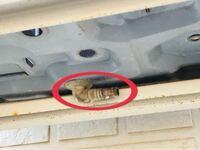 エアコンの室外機の底の部分にあるホースの様な部分ってどういう意味がありますか? またここからゴキブリが入り室内に侵入する可能性はありますか?