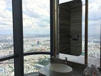 トイレがこんなガラス張りだったら、用を足せますか。