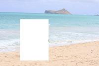 ハワイのビーチの名前が知りたいです。 結婚式場に向かう途中でビーチで撮影したのですが、場所がわかりません。  ワイキキからシーライフパークの隣にあるセントカタリナシーサイドチャペル に向かう途中のビーチでした。 写真にうつる島が目印だと思います。 開けたビーチで現地の方がチラホラ遊んでいました。駐車場が林の中にありました。  もし分かるかたがいれば教えてください。