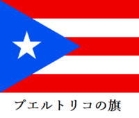 日本もプエルトリコのように、米国議会に代表を送るべきではないでしょうか? 日本とプエルトリコは似ています。国内に沢山の米軍基地が有るからです。ですからプエルトリコのようにアメリカ国籍を要求するのです。  日本国籍が無くなるのではなく、日本とアメリカの二重国籍を認めるのです。そうすればアメリカ議会に代表を送り込めます。  プエルトリコは米軍基地の駐留経費を払っていません。払いたくても金...