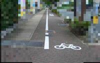 交通について 歩道にも自転車専用の道がありますよね その自転車専用の道で走行してる人としてない人がいると思いますが、してる人としてない人とではどちらが多いですか?