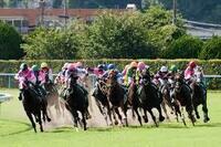 競馬予想会社の正しい取組み方について。 競馬、その他のギャンブルをビジネスとして取組みたいと思います。 国内では、大きな制約があり、笹川じゃあるまいし、ギャンブルビジネスに参入するなど、ほぼ不可能だ...
