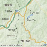 山口県岩国市と広島県廿日市市、どちらが優れていますか?