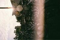 フィルムカメラで撮影して、いざ現像してみると白い筋?のようなものが出てきます。これはフィルムの装填が下手くそだからできるものなのでしょうか?それとも光の当たりすぎでしょうか? 画像のような感じです!