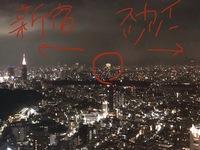 渋谷スクランブルスクエアにある渋谷スカイから、新宿方面に見えるカジノのような明るく大きな建物(画像参照)は何でしょうか? 新宿のビル群とスカイツリーの間にあるので、文京区や豊島区にある建物なのではないかと思います。22:55に建物のライトが消え、見えなくなりました。