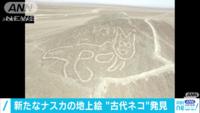これが新たに見つかったナスカの地上絵で猫だそうですが本物ですか?
