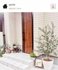 この右端に写っている木が何の木かわかる方教えてください!