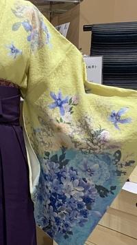 卒業式に着る袴について質問させてください。  卒業式で着ようと思っているのですが 紫陽花が大きく描かれています。 3月に着てもおかしくないでしょうか。 アドバイスお願いします。