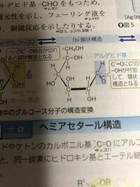 化学で質問です。グルコースの鎖状構造の第一位炭素につく-OHと=Oは位置が逆転しても良いのですか?