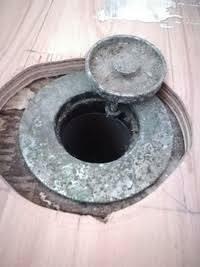 洗濯機のホースの周りの隙間からゴキブリが上がってきてるのを確認したので周りをテープで塞ぎました。 ホースの管から洗濯機の中に進入しますかね?その場合故障の要因になりますかね。  排水の管から洗濯機中...