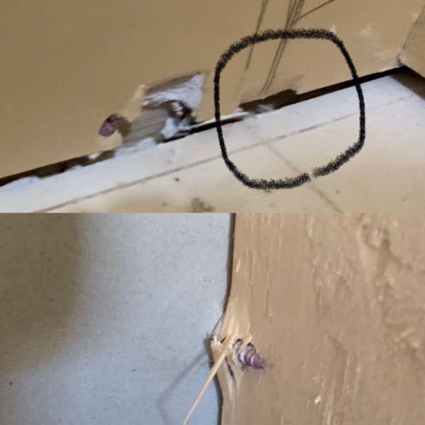 石膏ボードの割れについて質問です。 一戸建て新築中なのですが、 石膏ボードの下の方が割れて穴が開いていました。 たまたまここは確認できましたが、ほとんどふさがれていて、他にも黒い丸をつけたような...