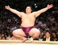 気の早い人に  大相撲11月場所  優勝候補は誰でしょう・・・?