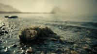 トワイライト・ゾーンの「3万フィートの戦慄」でよく分からない点があるのですか。 ・・・・・・・・・・・・・・・ 墜落した残骸の中に怪物の人形が浮いていましたか。 この怪物の人形て「2万フィートの戦慄」...