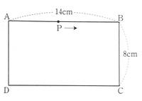 解答解説お願いします、。 [画像]の図のような長方形ABCDがある。点Pは頂点Aを出発し、辺AB,BC,CD上を通って、頂点Dまで毎秒2cmの速さで動き頂点Dに着くと、止まるものとする。 このとき次の問いに答えなさい...