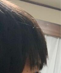 前髪に縮毛矯正かけたのですが前髪がこれはかなりぺたんこですか?またこのぺたんこを気にする女の人って結構いますか?