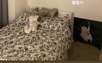 この布団カバー、枕カバーどこのかわかる方いませんか?