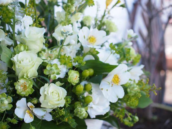 この花束に使われている花の名前を全て教えてください。 花が特に好きというわけではないのですが、この写真の花束が好みすぎて花の名前が気になります。 できれば、使われている花を全て教えて下さい。 ガー