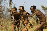 狩りの邪魔をする鳥は実在するのですか? アフリカ原住民 もう30年くらいは前の事ですが、世界中の様々な動物を特集した番組を父親が録画してくれていたので、何度も見返しました。  その中では、ハチの巣に何...
