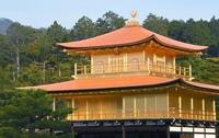 屋根のふき替え工事が終わって生まれ変わった金閣寺を見てどのような感想をもちますか