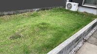 庭にウッドパネルを敷きたいので知恵をお貸しください。 自宅の庭ですが、リビングからの掃き出し口からは低過ぎて降りる事はありません。 駐車場からのアプローチも高さがある為ほぼ立入る事が無いです。 花壇が大きくなったような形をしています。 子供が産まれたのでここも遊び場にしたいのですが、手入れが面倒なので芝生を辞めてウッドパネルを敷き詰めたいです。 芝生を退ける→除草シートを敷く→土・砂利で水平...
