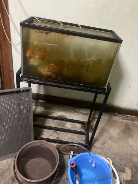 コンクリブロックか、レンガブロックを6個ほど設置し、その上に110Lの水が入るジャンボタライを乗せてそのジャンボタライに水を満杯に張ったら、 重さはどのくらいになりますか? 金魚水槽として使い...