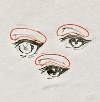 絵描きさんに質問です。 絵描きのゆーちゃんさんや漫画家の枢やなさんが描いている二重線の上の線(下の写真で赤で丸をしているやつです)は、実際の人間の顔の部位で言うと何処の部位に当たりますか?