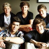 One Directionの活動再開はいつ頃になると思いますか? このまま解散なんて事は無いですよね?