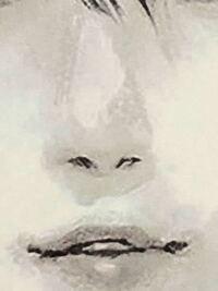 この鼻を鉛筆で模写したいのですが、なかなか上手くいきません。わかる方いたら教えてください