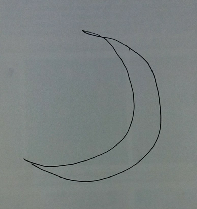 麒麟がくる 最終回 上弦の月?下弦の月? 本能寺の変の前、 丹後 亀山城で、光秀が家臣に信長を討つと告げた場面で、背後の壁(なんて言うんですかね?)に細い月が描かれてました。 あれは上弦の月?下弦の月?どちらでしょうか?(三日月か二十九日月(?)) 字幕で信長が本能寺に入ったのが天正十年五月二十九日とあり、その後の場面です。 本能寺の変があった二日の未明、つまり一日。旧暦は一日は新月と聞きました。そうすると、ドラマの壁に描かれた月は二十九日の月じゃないかと思ったのですが…下弦じゃないですよね?ドラマの日付と関係なく、ただの装飾として描かれただけですかね。深読みし過ぎだったんでしょうか。 ↓ こんな月ですm(__)m