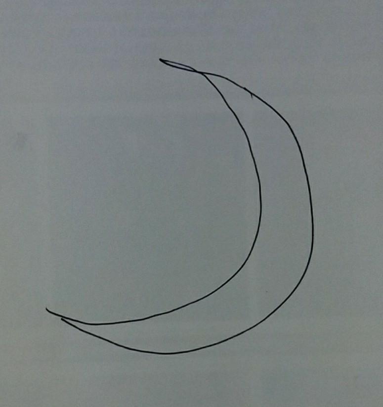 麒麟がくる 最終回 上弦の月?下弦の月? 本能寺の変の前、 丹後 亀山城で、光秀が家臣に信長を討つと告げた場面で、背後の壁(なんて言うんですかね?)に細い月が描かれてました。 あれは上弦の月?下弦の月?どちらでしょうか?(三日月か二十九日月(?)) 字幕で信長が本能寺に入ったのが天正十年五月二十九日とあり、その後の場面です。 本能寺の変があった二日の未明、つまり一日。旧暦は一日は新月と...