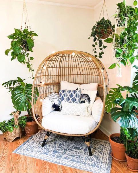 この椅子の名前ってなんて言うかご存知の方いらっしゃいますか?? よければ売っている場所やサイトも教えていただけると幸いです( ´•ᴗ•` )