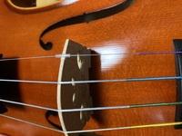 バイオリンのE弦についてるカバーみたいのってとっていいんですか?