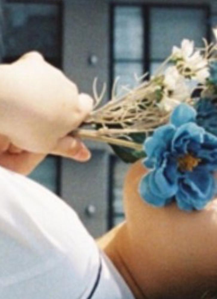 この青い花の種類がわかる人はいませんか?