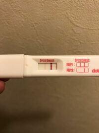 着床出血 当日 妊娠検査薬