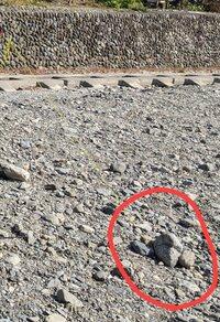 【キャンプ】砂利な多い河原でおすすめのペグは? 現在、付属の15cmアルミX字ペクを使ってますがすぐに抜けるのでロープとペグの間に大きめの石を置いています。 できればペグだけでテントやタープが張れないかの...