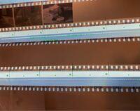 フィルムカメラ初心者です。 先日初めてPENTAXSPを使用し写真を撮りました。  現像から戻ってくると14枚目以降が何も写っておらずがっかりしてしまったのですが、考えられる理由は何がありますか?  写ってる部分は、晴れた日の屋外、夕方日没前、シャッタースピード1/125(1/60)、f1.8、ISO100で撮ってあります。  写ってなかった部分は、晴れた日の室内、日の差し込む窓際、昼頃、シ...