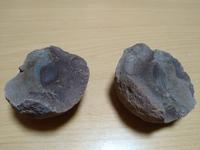 化石に詳しい方お願いします。群馬県の下仁田町で拾った物です。周りには貝の化石がいっぱいあるのですけどこれは化石でしょうか? 他の化石と違って少し固く、真ん中にアーモンドみたいな物があります。宜しくお...