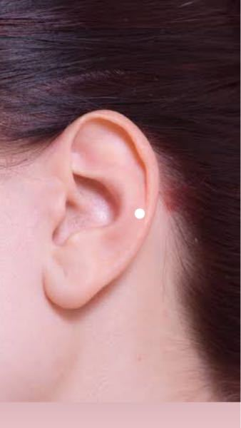 軟骨の始まり?らへんにピアスを開けようとおもっているのですが(写真の白い丸の位置) 自分の耳だと軟骨と皮膚?が半々で開けたい位置に開けると軟骨の端にちょこっとぶつかる 位置になってしまいます。 ...