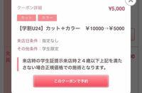ホットペッパービューティーで、このクーポンを使ったらどんなカラーにしても5000円なんですか? 値段が上がることはありますか? 上がることがあったらそれはどこに書かれていますか?