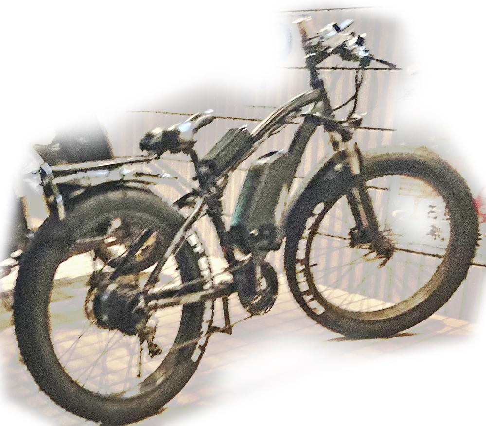 この電動バイクの品名はわかりますか?