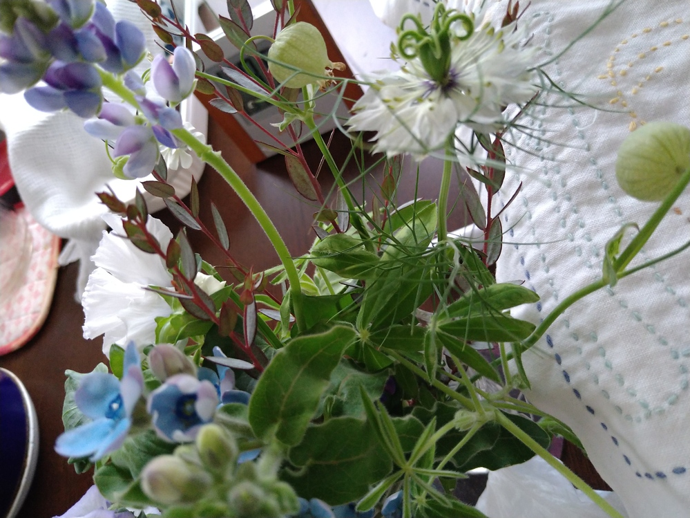 花の名前を知りたいです。 日比谷花壇の花束をいただいたのですが、どれも珍しい知らない花ばかりです。 いろいろ検索してもわかりません。どれか一つでもいいのでご存知のかた教えてください。よろしくお願...