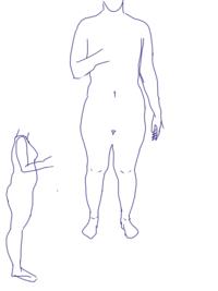 骨格診断  この体型はストレート、ウェーブ、ナチュラルのどれに分類されますか?  鎖骨は出ていません。 手の形状はストレートの特徴に近いですが、手足がどちらも身長の割に大きいです。  他に必要な情報があればお答えします。