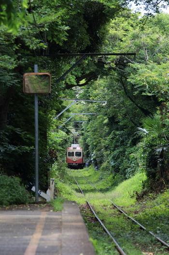 廃止された廃駅巡りをしてたら、 来るはずのない電車が、前照灯を灯し、 ジョイント音を響かせながら、入線してきたら、どうしますか? 我が身を疑いますか? カメラを向けシャッターを降ろしますか?