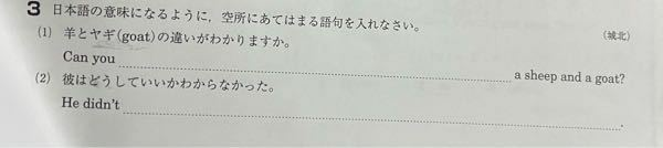 英語の問題なのですが 力を貸して欲しいです こちらの2文わかる方いませんか?