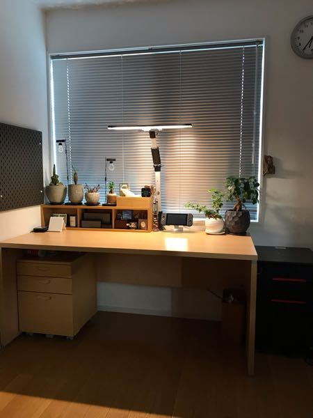 中2です 僕は観葉植物が好きなので机にこんな感じで置いてます! こうするといいとかここが良くないとかあれば教えてください!