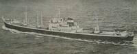 釜山って今も海上交通の要衝でしょうか? この船(Oinoussios)は昭和30年代に北アメリカと釜山を航海しました