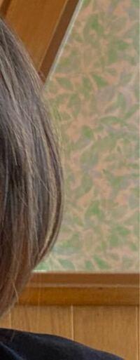 美容師さんからアッシュがかった珍しい地毛と言われましたが、そう見えますか?
